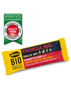 Organic Energy Raw Bar 35g